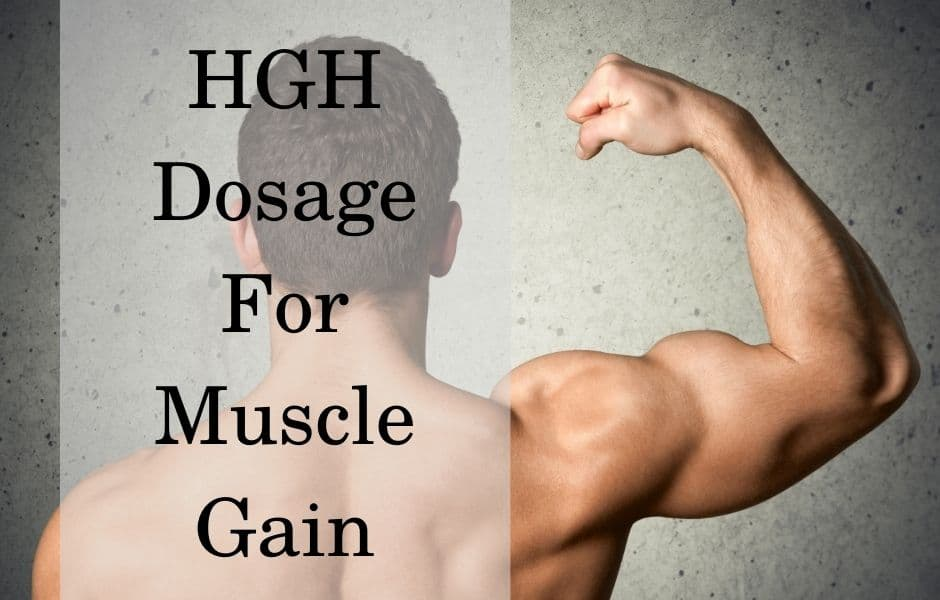 HGH dosage for muscle gain